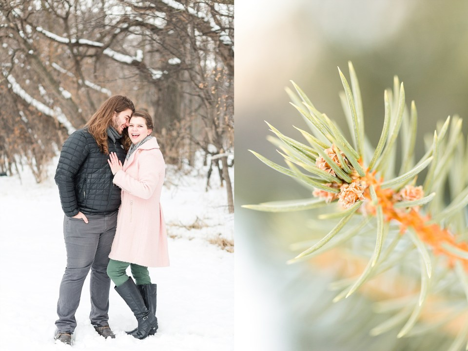 Pine tree and wooded engagement session
