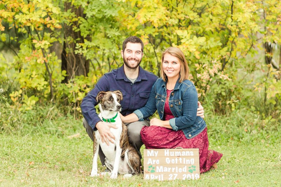 A dog smiles during an engagement session in Riverwood park