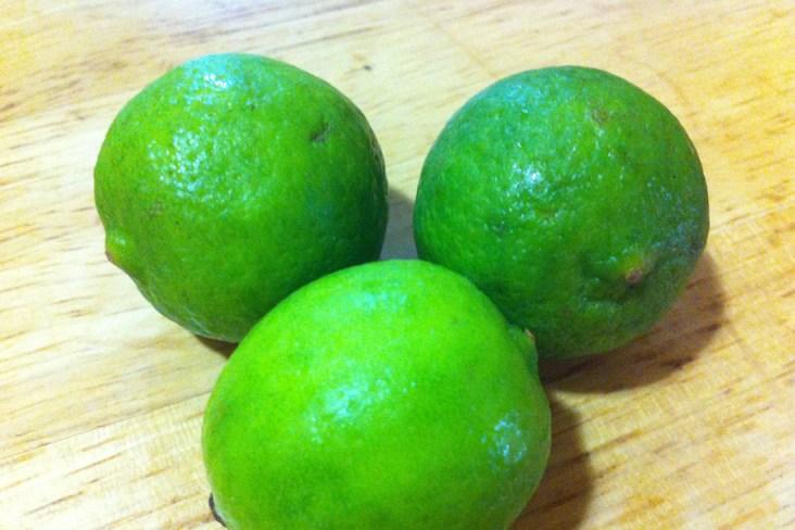Fresh Key Lime