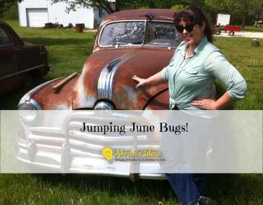 Akram's Ideas: Jumping June Bugs