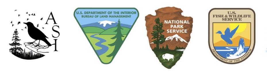 N4S logos
