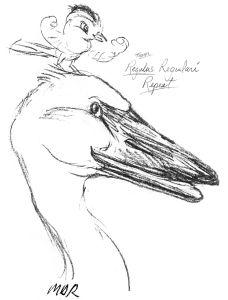 birdathon 16 logo