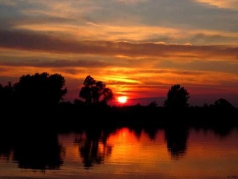 Sonnenuntergang an der Maas