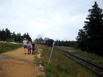 wir sehen endlich die Harzquerbahn
