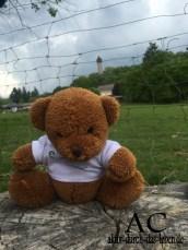 Aktiv-Teddy