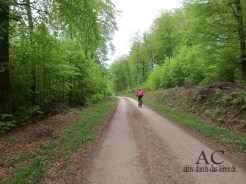 Mountainbiken ist hier sehr gut möglich. Auch geführte Touren gibt es.