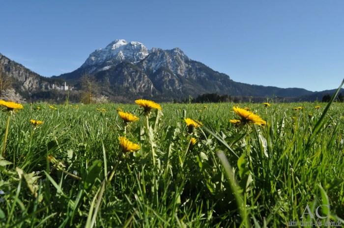Allgäuer Berge bei Füssen