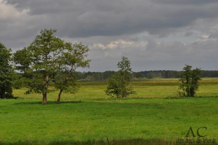 Schollene im Havelland