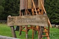 Im Naturpark Rothaarsteig unterwegs
