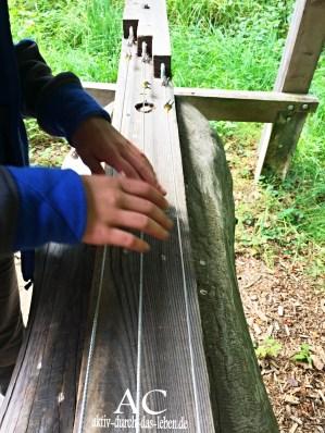 Eine Waldgitarre