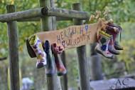 Wunderschön gestaltete Schilder von den Kindern des Waldkindergarten Winkelholzbande