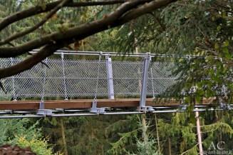 Blick zur Brücke.