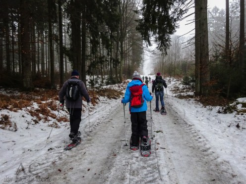 Schneeschuhwanderung Reinsfeld 22