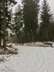 Schneeschuhwanderung Reinsfeld 13