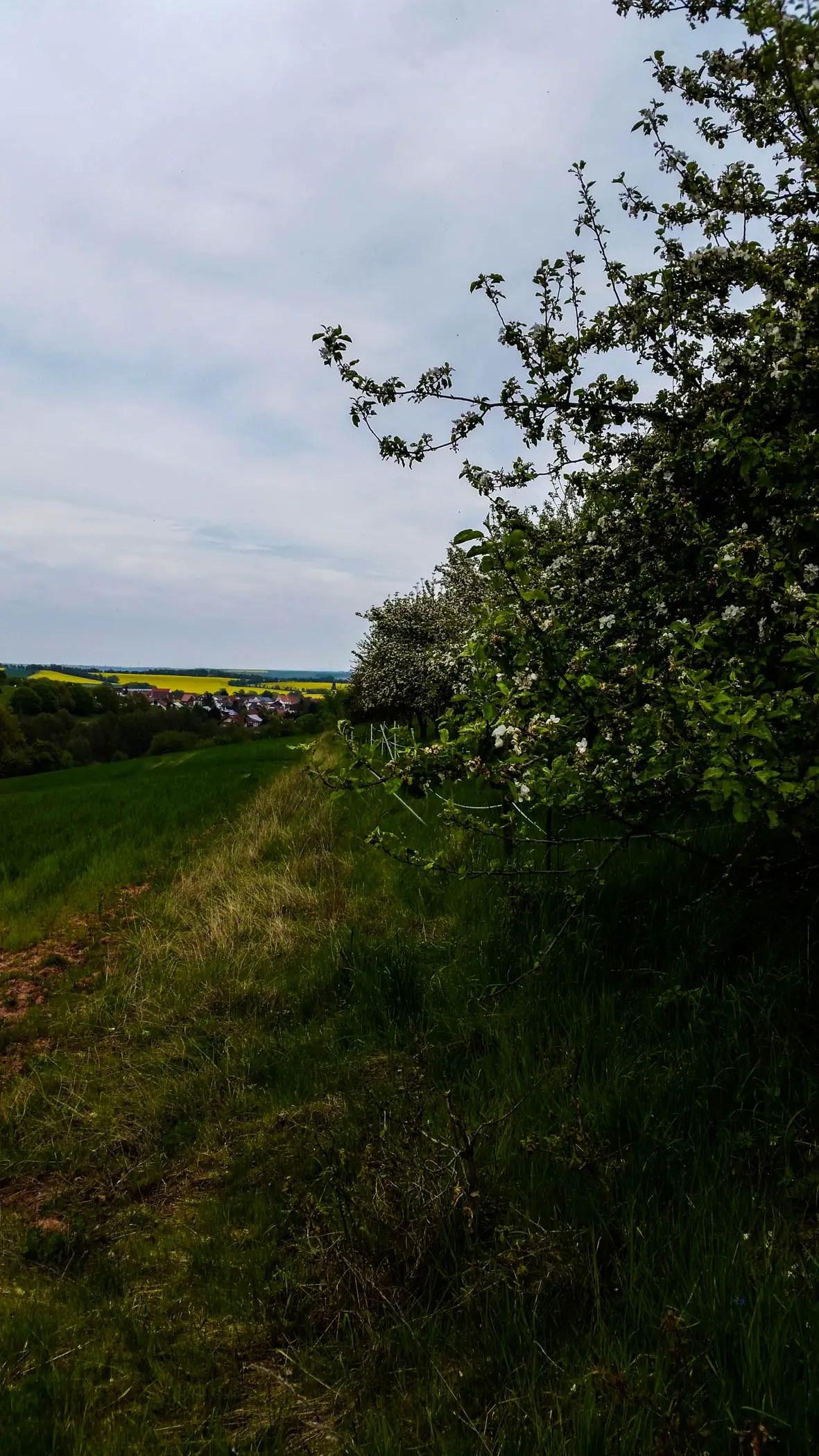 Blick vom Wiesenweg