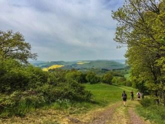 Wandermarathon Donnersberg 3