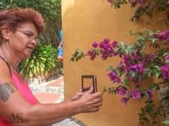 Anita und die Blumen