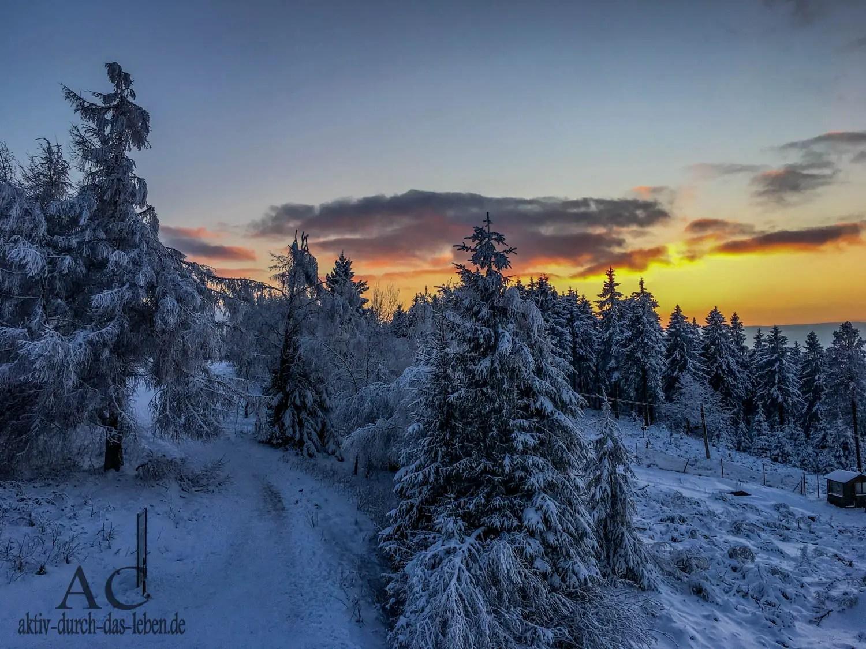 Winterwunderland Hunsrück – Wandern auf der Traumschleife Gipfelrauschen