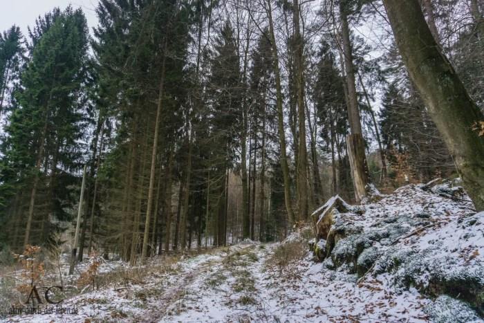Hinkelsteinweg Otterberg Winter