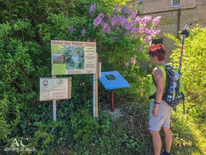 Tafel Hildegrad von Bingen Pilgerwanderweg Staudernheim