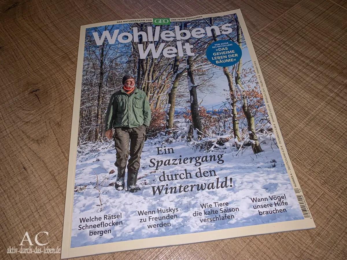 Lesetipp: Wohllebens Welt (4) – Ein Spaziergang durch den Winterwald!