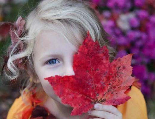 Prävention im Kindergarten | Ernährungsberatung für Kinder