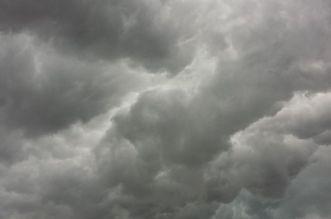 meteo nori