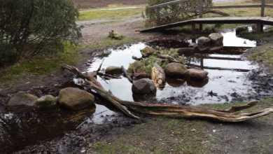 Photo of Vandalismus gefährdet Naturerlebnis