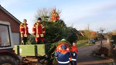 Photo of Jugendfeuerwehren sammelten wieder die ausgedienten Weihnachtsbäume ein