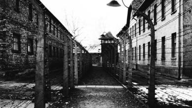 Photo of Am Tag des Gedenkens an die Opfer des Nationalsozialismus