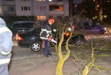 Photo of Erste Ausläufer in Hamburg – Baum stürzt auf Fahrzeug
