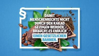 Photo of ROBIN WOOD fordert Lieferkettengesetz zum Schutz von Menschenrechten und Umwelt im Kakaoanbau