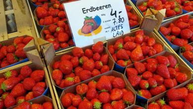 Photo of Altländer Erdbeeren suchen süße Partnerschaft