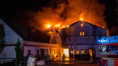 Photo of Feuer auf Reiterhof kostet zwei Pferden das Leben