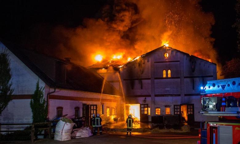 Bild von Feuer auf Reiterhof kostet zwei Pferden das Leben