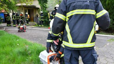 Photo of Feuerwehr rettet fünf Hunde und zwei Katzen aus den Flammen