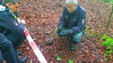 Photo of Spaziergänger findet Bombenreste im Wald