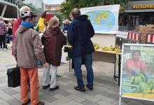 Bild von Warum ist die Banane … fair?