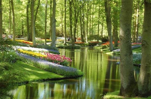 Keukenhof-Gardens-Hollanda