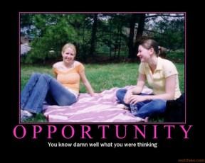 Opportunity (Motivator)