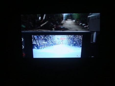 Video 'Interseksi'