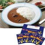 1999年の発売開始より累計販売数1,300万食突破の横須賀ご当地名物カレー。