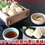 海鮮シュウマイ 北海道のホタテをふんだんに使用、蒸しても揚げても美味