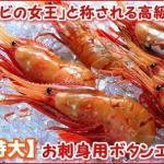 生で食べると美味しい海老です。まずはお刺身でお召し上がりください。