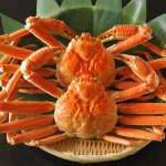 ずわい蟹姿 2尾 新鮮な蟹を冷凍しているので解凍するだけ