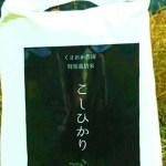 長浜市余呉町 【玄米5㎏】一粒一粒に甘みのぎゅっとつまった 特別栽培コシヒカリ