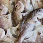 旨味ぎゅっ!干物2セット旬のお魚に、むじょかさばの干物は1枚、1枚