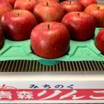『完熟サンふじ』【秀品】10Kg 22個から36個入 7,000 円