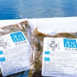 塩漬け天然もずく 500グラム(常温)シャキッと新鮮な海の香りがお口いっぱいに