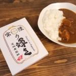 茨城県産新ブランド豚「常陸の輝き」の豚肉 常陸の輝きカレー2箱セット